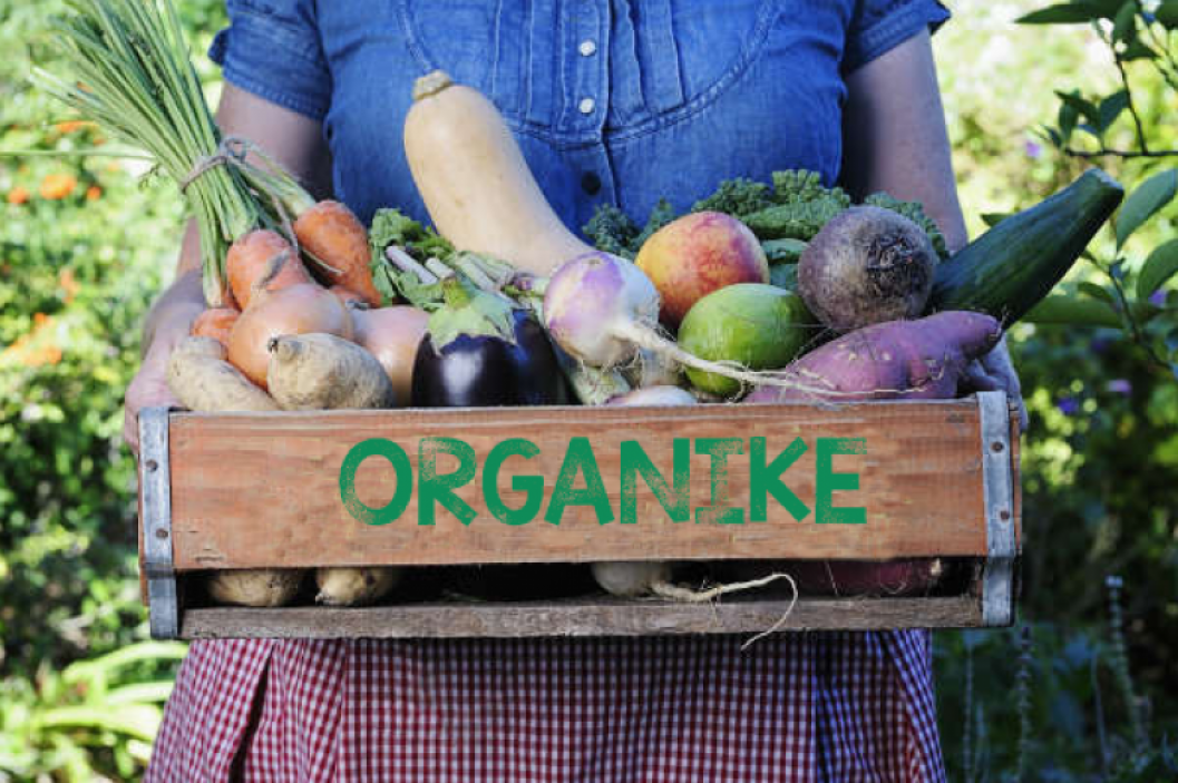 A food product is organic only if it is grown without synthetic pesticides, artificial growth hormones, antibiotics, GM, chemical fertilizers etc. Photo: WebLibrary