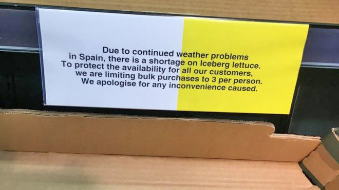 Empty lettuce shelves in Tesco stores  signs asking clients to limit lettuce purchases. Photo: WebLibrary
