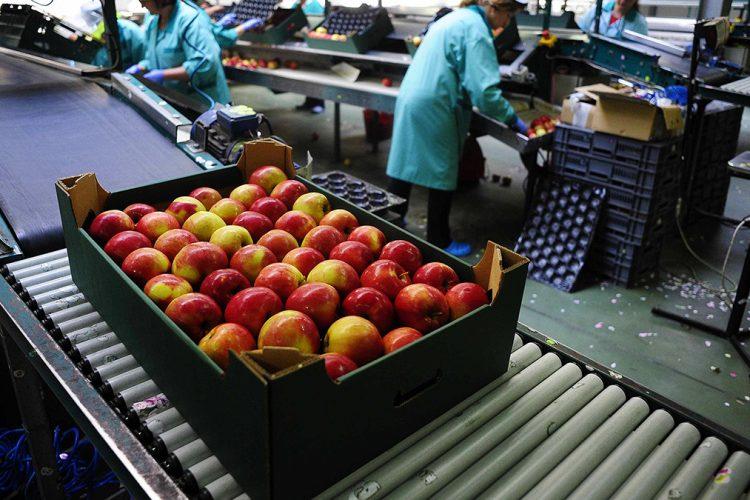 Eksportet shqiptare me vendet e CEFTA-s shënuan rritje me 14%